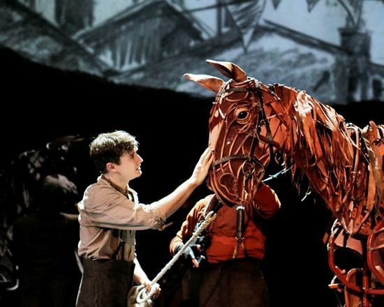 war horse book report